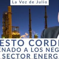 Ernesto Cordero brincó del Senado, a los NEGOCIOS en el Sector Energético